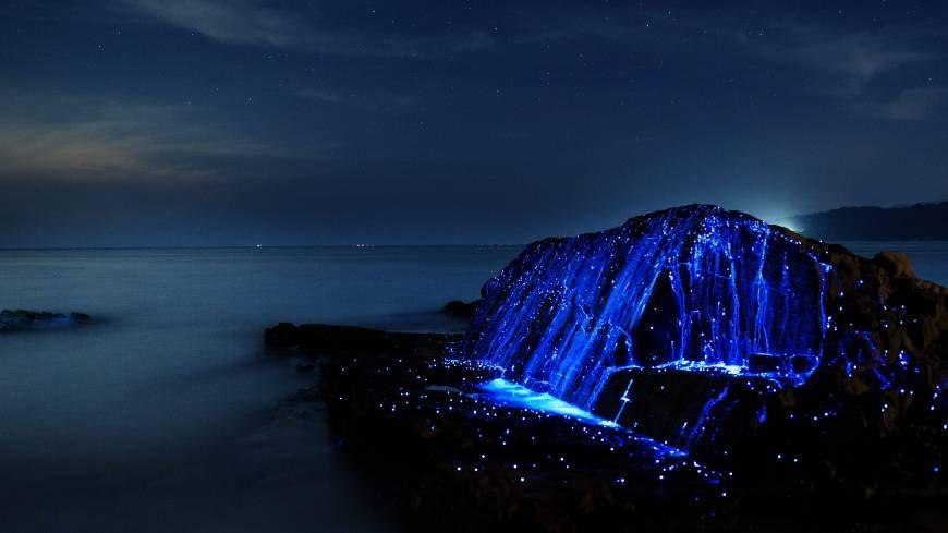 Awaji Isaland Sea