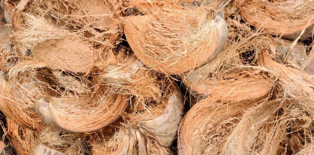 cara membuat pot bunga dari sabut kelapa