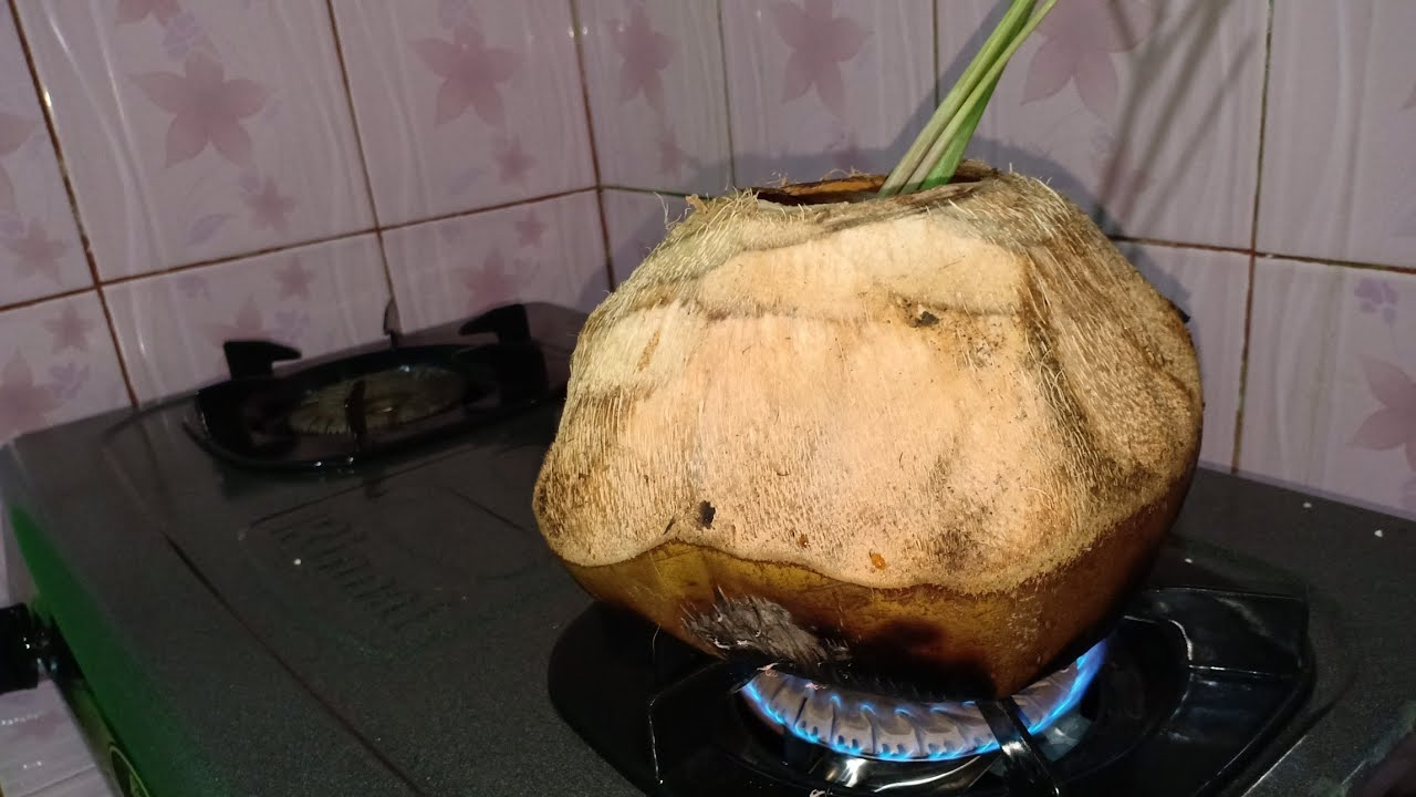 manfaat kelapa muda rebus